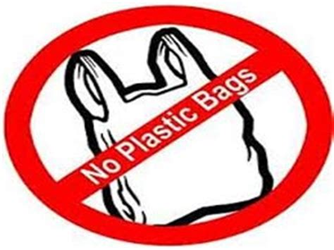 Essays on Polythene Bags Should Be Banned - Essay